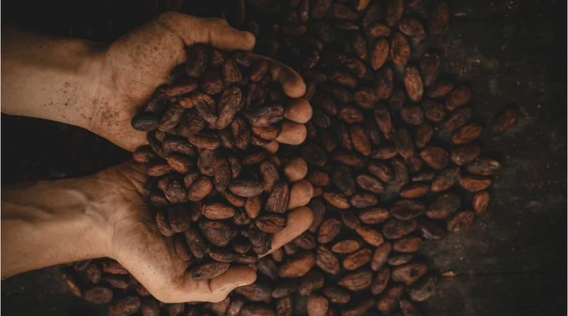 high-blood-pressure-diet-cocao