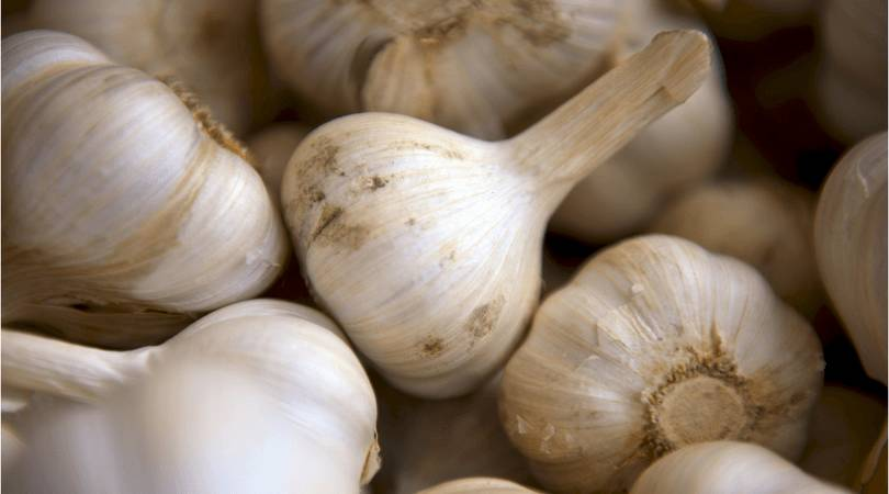 high-blood-pressure-diet-garlic